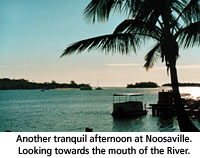 Things to do on the Noosa River